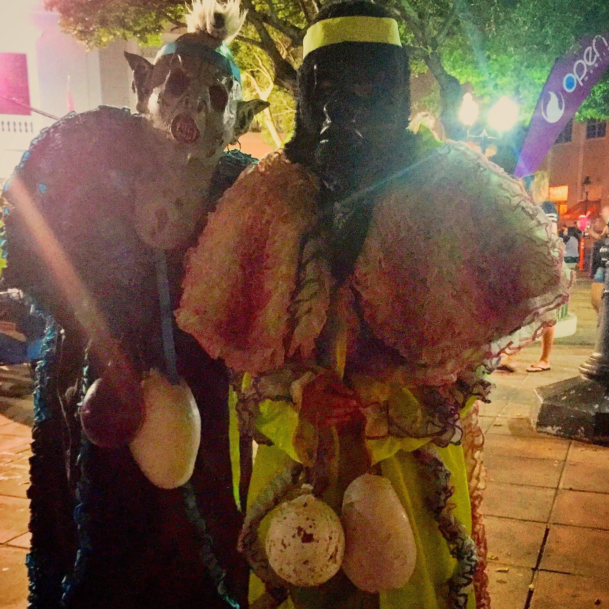 vejigantes, costumed and masked adolescent boys at carnival in ponce puerto rico