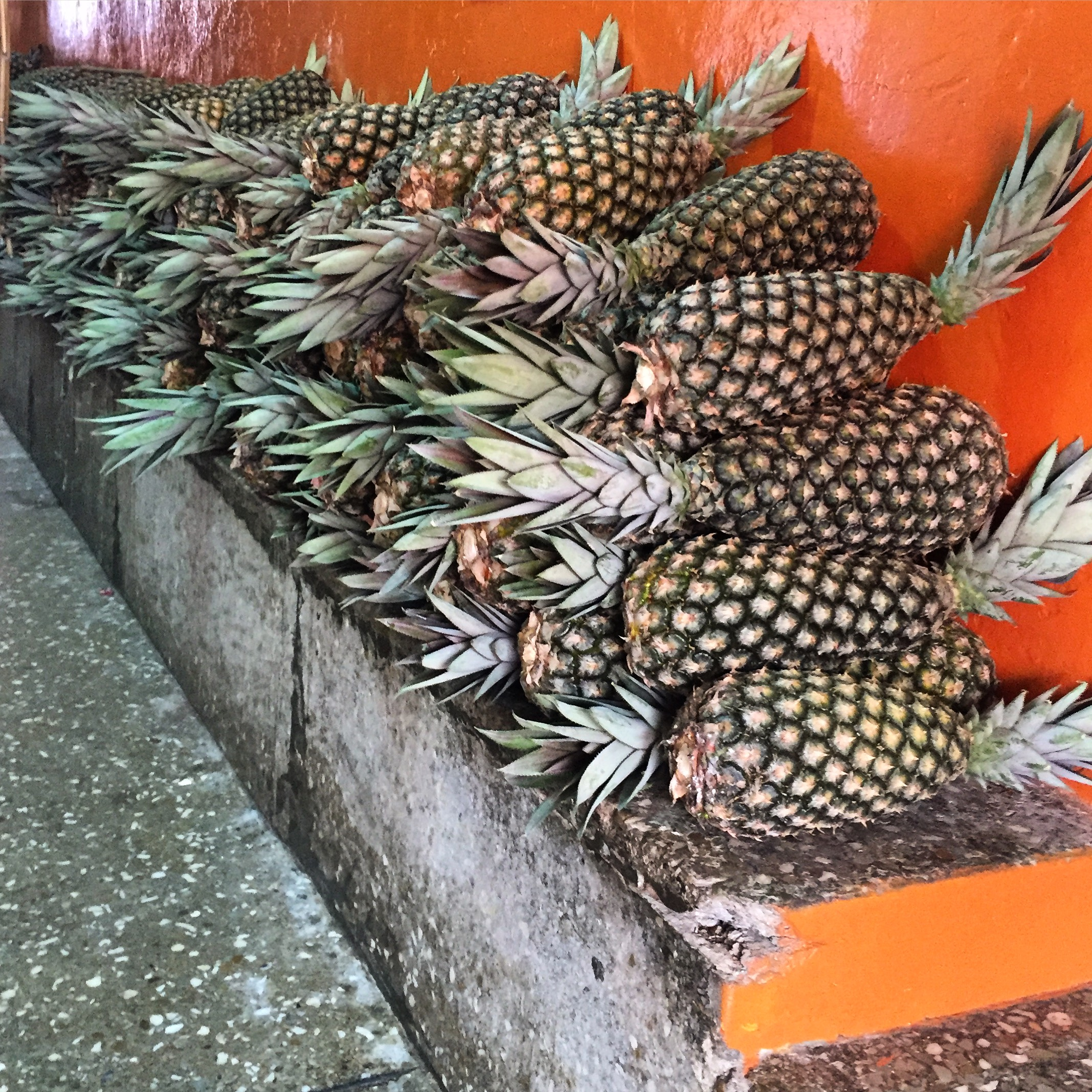 a pile of pineapples stacked on a cement bench against an orange wall